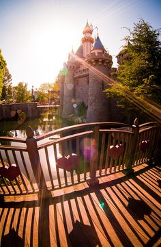 Walt Disney World v. Disneyland - Read to find out which is better!