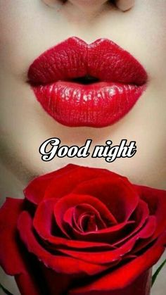 Have lovely sleeping Good Night Love Messages, Good Night I Love You, Romantic Good Night, Good Night Love Images, Good Night Prayer, Good Night Blessings, Good Night Greetings, Night Messages, Good Night Wishes