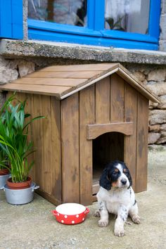 Niches, cages, chenils et parcs chien Dog House Plans, Cool Dog Houses, Dog Cages, Mini Dogs, Dog Items, Animal Projects, Outdoor Dog, Cool Diy, Large Dogs