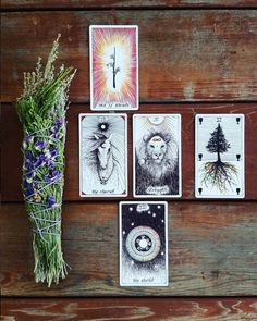 the wild unknown tarot tarot readings image via @mysticmoons_tarot tarot cards, tarot spread, sage, smudge stick, the world, ace of wands, the chariot, strength