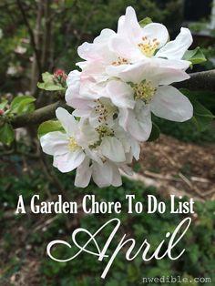 Complete vegetable gardener's chore list for April.