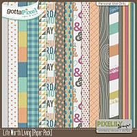 {Life Worth Living} Digital Papers by Pixelily Designs available at Gotta Pixel http://www.gottapixel.net/store/product.php?productid=10017141&cat=&page=1 #digiscrap #digitalscrapbooking #pixelilydesigns #lifeworthliving