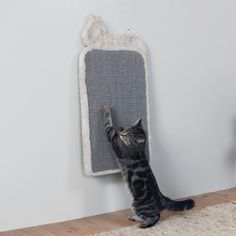 Arbre à chat et griffoir - Tapis Griffoir pour chats
