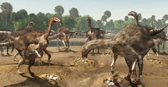 Chemical analysis demonstrates communal nesting in dinosaurs