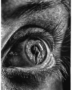 Self-taught artist Jono Dry explores a surrealist point of view through hyperrealism art.