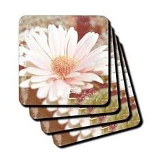 Everything Beauty Floral Inspirational Quote - Coasters