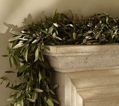 Live Olive Leaf & Myrtle Garland | Pottery Barn