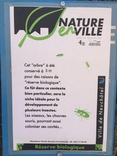 Nature en ville - Neuchâtel