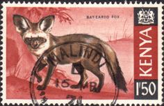Postage Stamps Kenya 1966 Republic Animals Bat-eared Fox SG 31 Fine Used Scott 31 For Sale Take a look