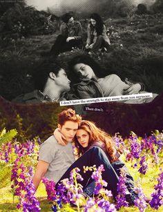 "Breaking dawn ""Forever"""