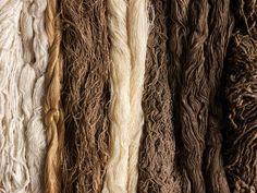 Various 'wild' silk skeins, Assam, Odisha and Madhya Pradesh, India, 2014 The Fabric of India: Nature & Making - Victoria and Albert Museum