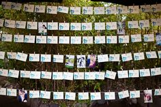 Super cute way to display pics of couple and escort cards