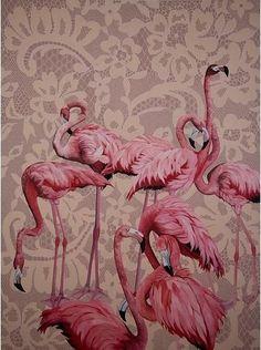 Flamants roses sur la dentelle / Flamingos on lace