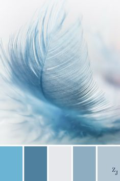 ZJ Colour Palette 243 #colourpalette #colourinspiration
