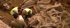 Mamut devorado en el Pleistoceno