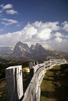 Alpe di Siusi  / South Tyrol, Italy