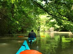 One day river adventure on Kamchia