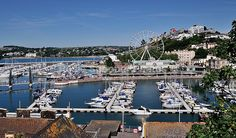 The new Marina Style Harbour at Torquay and Big Wheel - Torbay
