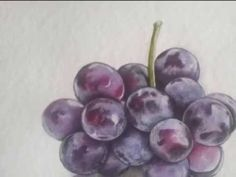 Acquerello dipingere un grappolo d'uva - YouTube