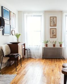 Jessica & Milo's 400 Square Foot Studio (Filled with Interesting Stuff!) — House Call | Apartment Therapy