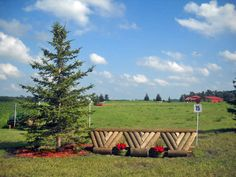 Cross Country Jumps at Magister Equitum Stables