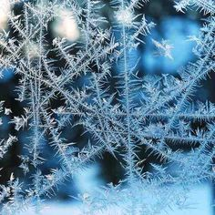 Window Frosting | Interesting frost patterns on a window at … | Flickr