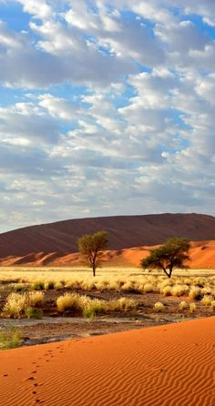 National Park, Namibia