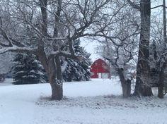 Beautiful winter scene.