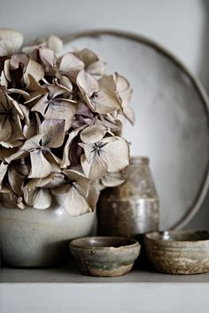 Wabi sabi, this culture is amazing . learning to see the beauty in imperfection . Wabi Sabi, Casa Wabi, Earthy Color Palette, Grey Palette, Deco Floral, Stunning Photography, Life Photography, Product Photography, Blog Deco
