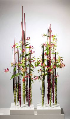 Ikebana Artist  Tomas De Bruyne. Enjoy RUSHWORLD boards, IKEBANA JAPANESE FLORAL ART, EYE CANDY ARCHITECTURAL MASTERPIECES and ART A QUIRKY SPOT TO FIND YOURSELF. Follow RUSHWORLD on Pinterest! New content daily, always something you'll love!