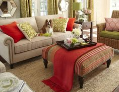 Lilly relaxes on our comfy Alton Sofa