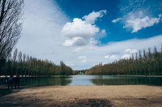 #seaux #parcdeseaux #92 #france #wandering #bluesky #landscape #parc #leicaq #summilux #madeinwetzlar