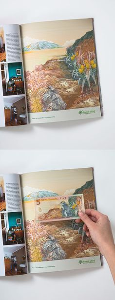 Forest & Bird. Your cash makes a difference – print.