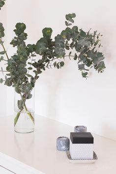 MOT SOMMAREN Scandinaviska hem Eukalyptus