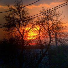 #sunset #sun #trees #city #clouds