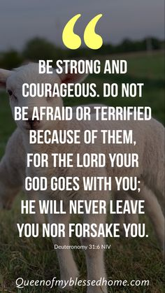 """""""Be strong and courageous. Do not be afraid or terrified because of them, for the Lord your God goes with you; he will never leave you nor forsake you. Christ Quotes, Prayer Quotes, Religious Quotes, Spiritual Quotes, Faith Quotes, Quotes Positive, Wisdom Quotes, Quotes Quotes, Bible Verse Memorization"""