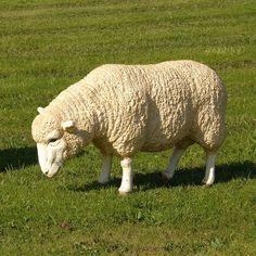 HICKS and HICKS Grazing Merino Sheep statue - Hicks & Hicks