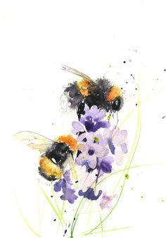 Jen Buckley Art - LIMITED EDITON PRINT of my original BUMBLE BEEs on a delphinium
