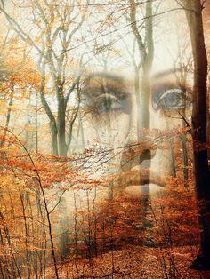 'Behind the autumn' von Gabi Hampe bei artflakes.com als Poster oder Kunstdruck $23.56