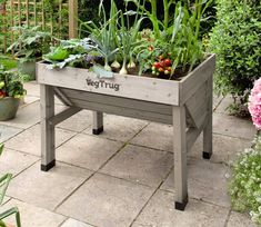 VegTrug Small Classic Planter - GardenSite.co.uk Raised Planter Beds, Raised Bed, Garden Fencing, Garden Planters, Garden Site, Garden Structures, Garden Supplies, Garden Furniture, Compost