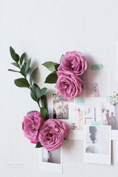 Fresh flowers on an inspo wall of polaroids//