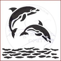 ST Dolphins