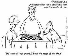 Pet Playing Chess