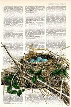 Robin bird nest print on Book page-Nest and eggs Art by PRRINT Vintage Diy, Vintage Ideas, Etsy Vintage, Book Page Art, Bird Illustration, Bird Drawings, Art Mural, Nursery Wall Art, Nursery Prints