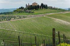 Tuscan Countryside [1050 x 700] [OC]