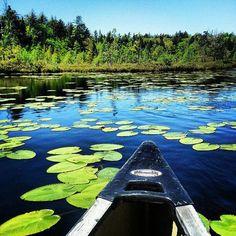 Fish Creek Pond