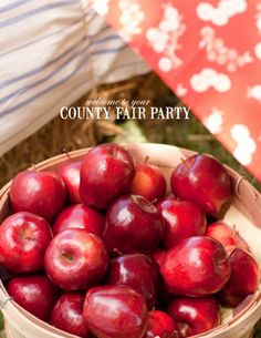 County Fair party would be a great theme for our family fall party. Country Fair Party, Country Themed Parties, Western Parties, County Fair Theme, County Fair Birthday, Water Party, Farm Party, Party Planning, Birthday Parties