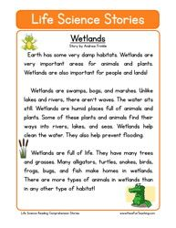 second grade reading comprehension worksheet holiday stories mothers day mothers. Black Bedroom Furniture Sets. Home Design Ideas