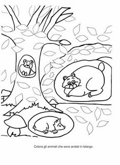 Blog scuola, Schede didattiche scuola dell'infanzia, La maestra Linda, Schede didattiche da scaricare, Halloween Crafts For Toddlers, Christmas Crafts For Kids, Toddler Crafts, Halloween Doodle, Christmas Ornament Crafts, Halloween Pictures, Autumn Activities, Coloring Book Pages, Coloring Pages For Kids