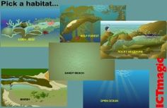 A useful science resource about many ocean habitats and the adaptions fish have to survive there. Design your fish to thrive in the habitat.